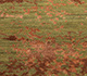 Jaipur Rugs - Hand Knotted Wool and Bamboo Silk Green ESK-411 Area Rug Closeupshot - RUG1081288