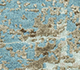 Jaipur Rugs - Hand Knotted Wool and Bamboo Silk Blue ESK-9014 Area Rug Closeupshot - RUG1085456